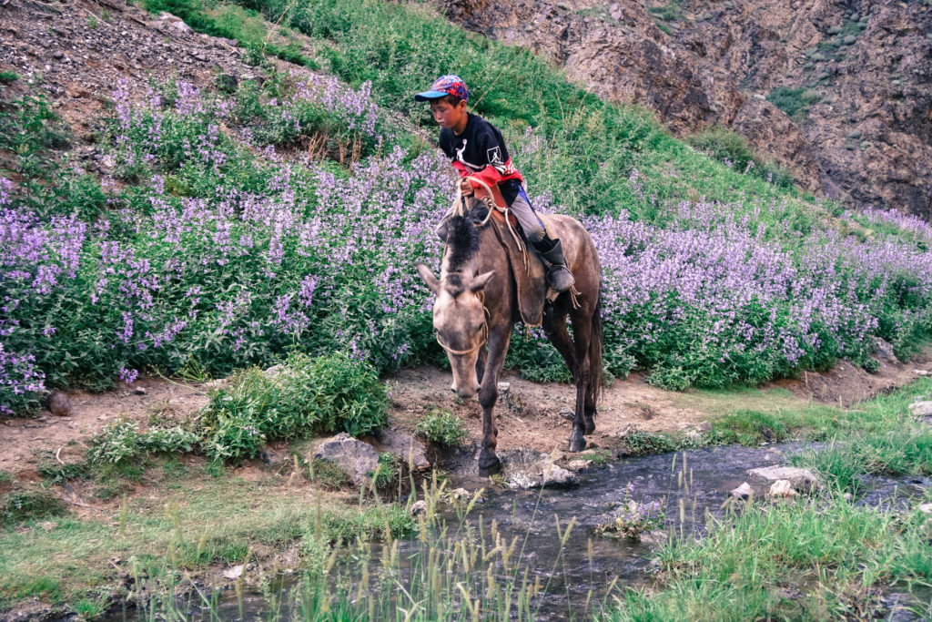 Junge auf einem Pferd